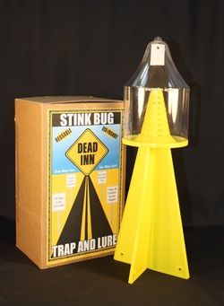 Stink bug trap and box